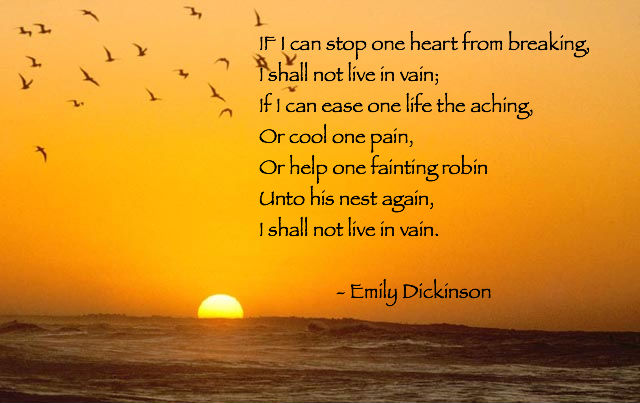 life death and reincarnation in the poem i felt a funeral in my brain by emily dickinson Literature: an introduction to fiction,  an introduction to fiction, poetry, drama,  emily dickinson, my life had stood.