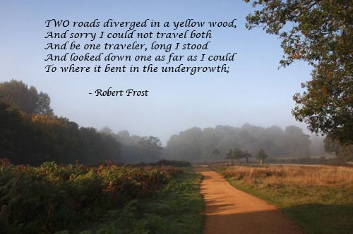 the valid meanings of the road not taken by robert frost